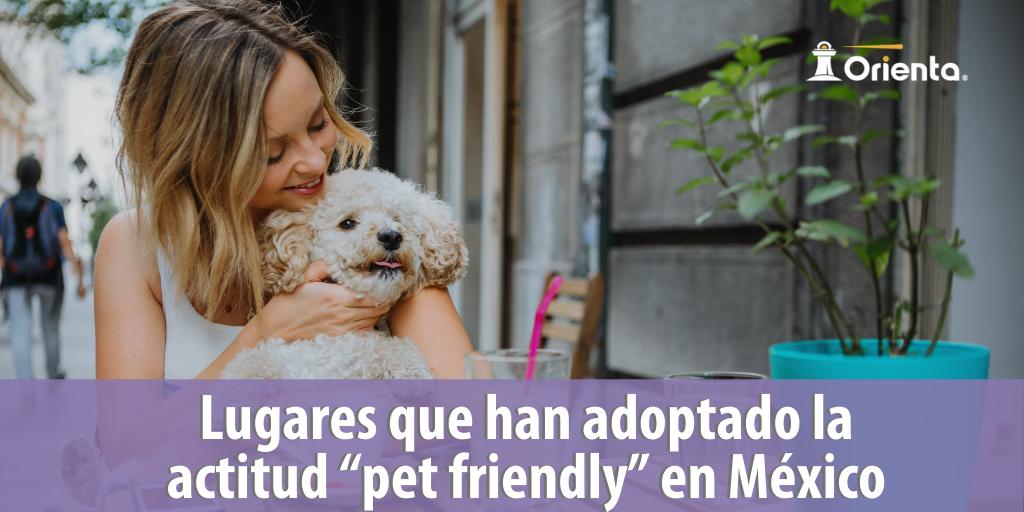 """Lugares que han adoptado la actitud """"pet friendly"""" en México"""